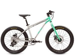 "Early Rider Belter 20"" Trail 3 Children's Bicycle – Image 3"