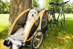 Burley Tail Wagon Dog Bike Trailer – Image 7