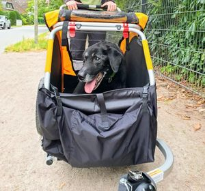 Burley Tail Wagon Dog Bike Trailer – Image 3